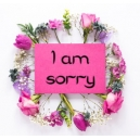 I am Sorry Flower Gift To Philippines