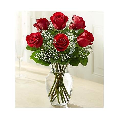 6 Premium Long Stem Red Roses