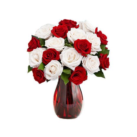 9 Red & 9 White Roses in Vase