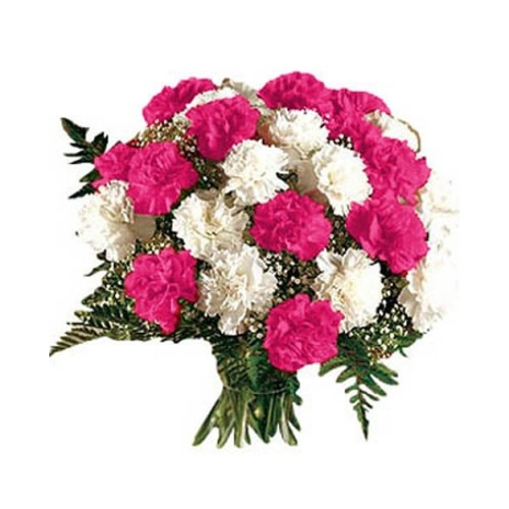 24 White and Pink Carnation Hand Bouquet