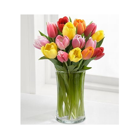 12 Colorful Mix Tulip with Free Vase