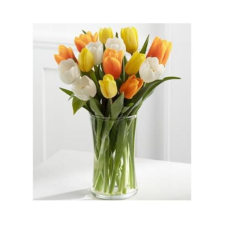 12 Harmony Mix Tulip with Free Vase