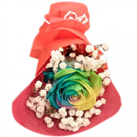 send one piece beautiful rainbow roses to philippines