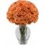 50 Oranga Roses in Vase