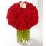 49 Red  & 1 White Roses in Vase