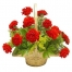12 Red Carnations in Basket