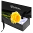 Send Single Yellow Rose in Box to Philippines