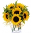 Online 6 Pieces Sunflower Vase to Philippines