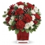 24 White and Red Carnations with Greenery