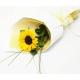Online Single Sunflower Bouquet  to Philippines