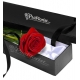 Send Single Red Rose in Box to Philippines